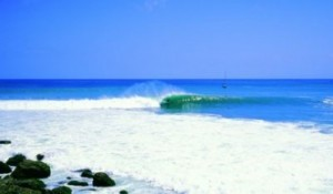 Rip Curl Cup 2011