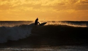 Raglan Rooster Tails