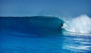 Indo's Big Week Vol I